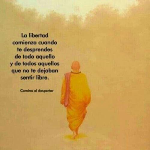 Todos somos libres, pero no todos usamos nuestra libertad.