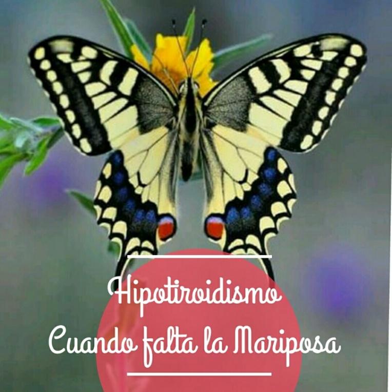 hipotiroidismo cuando falta la mariposa